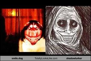 smile.dog Totally Looks Like shadowlurker