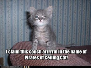 I claim this couch arrrrrm in the name of Pirates of Ceiling Cat!