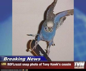 Breaking News - ROFLrazzi snap photo of Tony Hawk's cousin