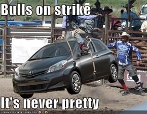 Bulls on strike  It's never pretty