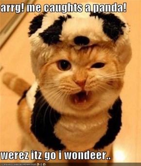 arrg! me caughts a panda!  werez itz go i wondeer..