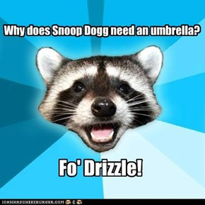 Why does Snoop Dogg need an umbrella?