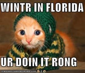 WINTR IN FLORIDA  UR DOIN IT RONG