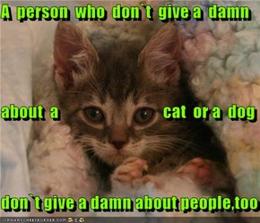 A  person  who  don`t  give a  damn  about  a                               cat  or a  dog  don`t give a damn about people,too