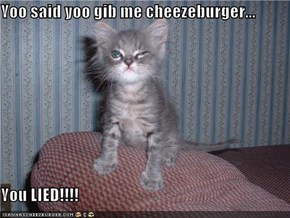 Yoo said yoo gib me cheezeburger...  You LIED!!!!