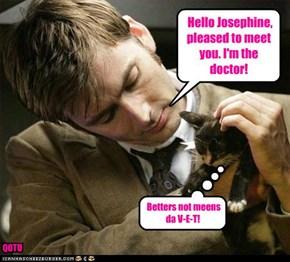 Hello Josephine,