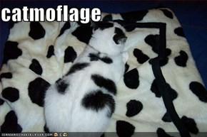 catmoflage