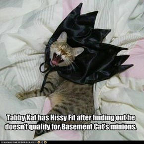 Tabby Kat has Hissy Fit after finding out he doesn't qualify for Basement Cat's minions.
