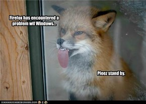 Firefox has encountered a problem wif Windows...