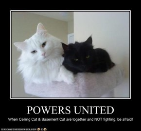 POWERS UNITED