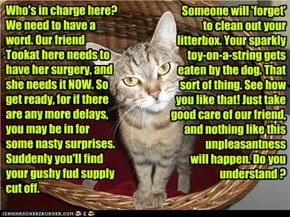 Who's in charge here? We need to have a word. Our friend Tookat here needs to have her surgery, and she needs it NOW. So get ready, for if there are any more delays, you may be in for some nasty surprises. Suddenly you'll find your gushy fud supply cut of