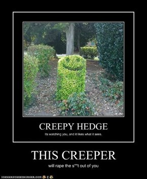 THIS CREEPER