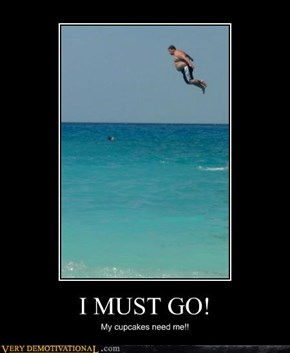 I MUST GO!