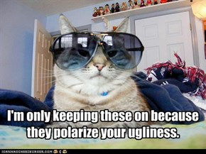 I'm only keeping these on because they polarize your ugliness.
