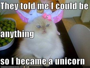 They told me I could be anything so I became a unicorn