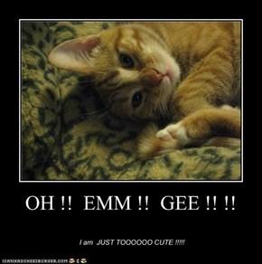 OH !!  EMM !!  GEE !! !!