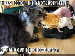 THEES TEEF O MINE R NOT JUST 4 EETIN  SO HAND OVR TEH CHEEZBURGER