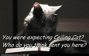 You were expecting Ceiling Cat?Who do you think sent you here?