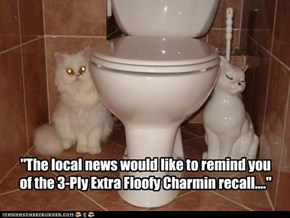 """The local news would like to remind you of the 3-Ply Extra Floofy Charmin recall...."""