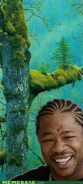 Yo Dawg, I heard you like Trees