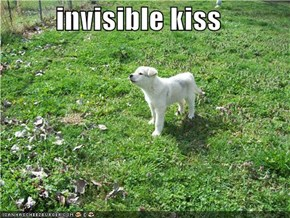 invisible kiss
