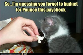 So...I'm guessing you forgot to budget for Pounce this paycheck.