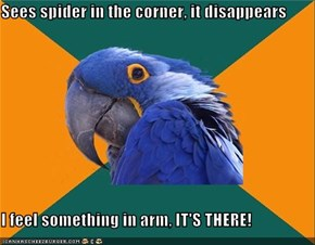 Sees spider in the corner, it disappears  I feel something in arm, IT'S THERE!