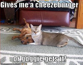 Gives me a cheezeburger  or goggie gets it!