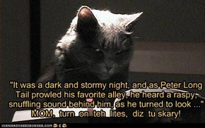 """""""It was a dark and stormy night, and as Peter Long Tail prowled his favorite alley, he heard a raspy,  snuffling sound behind him, as he turned to look ...""""   MOM,  turn  on  teh  lites,  diz  tu skary!"""