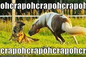 ohcrapohcrapohcrapohcrap  crapohcrapohcrapohcrapoh