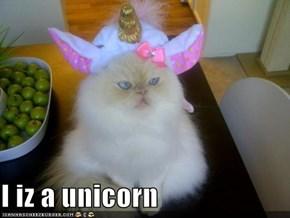 I iz a unicorn