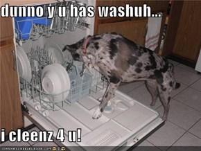 dunno y u has washuh...  i cleenz 4 u!