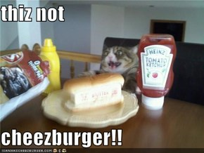 thiz not  cheezburger!!