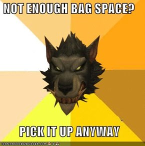 NOT ENOUGH BAG SPACE?  PICK IT UP ANYWAY