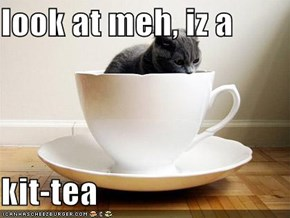 look at meh, iz a  kit-tea