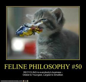 FELINE PHILOSOPHY #50