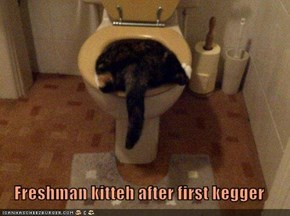 Freshman kitteh after first kegger
