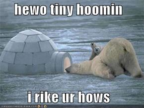 hewo tiny hoomin  i rike ur hows