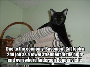 Due to the economy, Basement Cat took a 2nd job as a towel attendent at the high-end gym where Anderson Cooper visits.