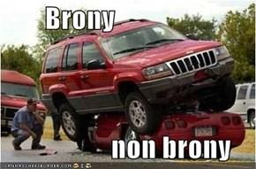 Brony                      non brony
