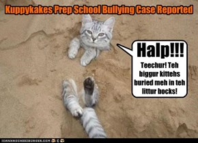 Kuppykakes Prep School Bullying Case Reported
