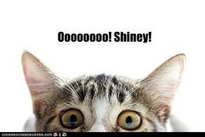 Oooooooo! Shiney!