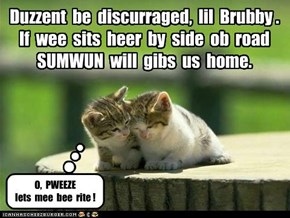 Duzzent  be  discurraged,  lil  Brubby . If  wee  sits  heer  by  side  ob  road  SUMWUN  will  gibs  us  home.