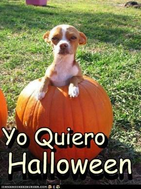 Yo Quiero Halloween....