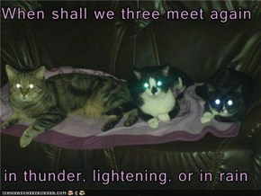 When shall we three meet again  in thunder, lightening, or in rain