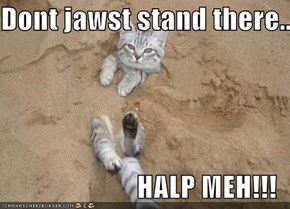 Dont jawst stand there...  HALP MEH!!!