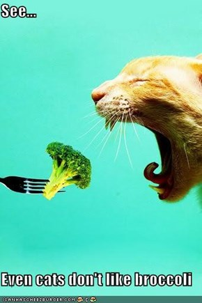 See...  Even cats don't like broccoli