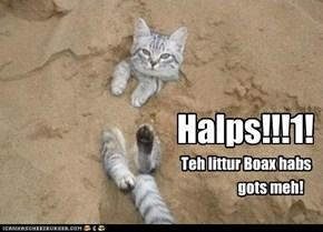 Halps!!!1!