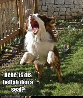 Hehe, is dis bettah den a seal?