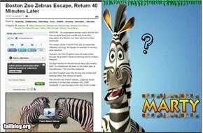 Madagascar IRL